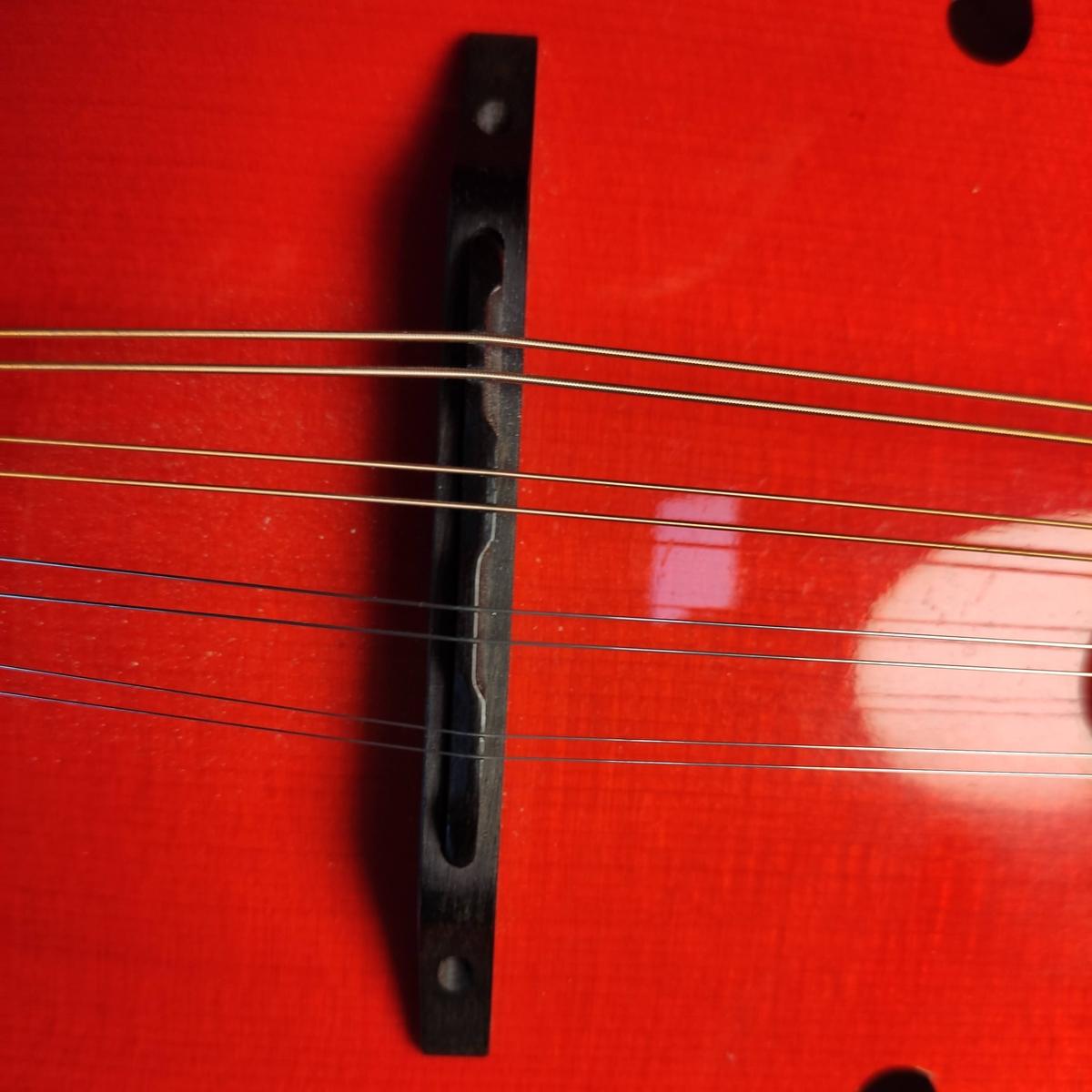 Mandoline Steg Coufleau Brekke Gibson A9 Bluegrass Kompensation