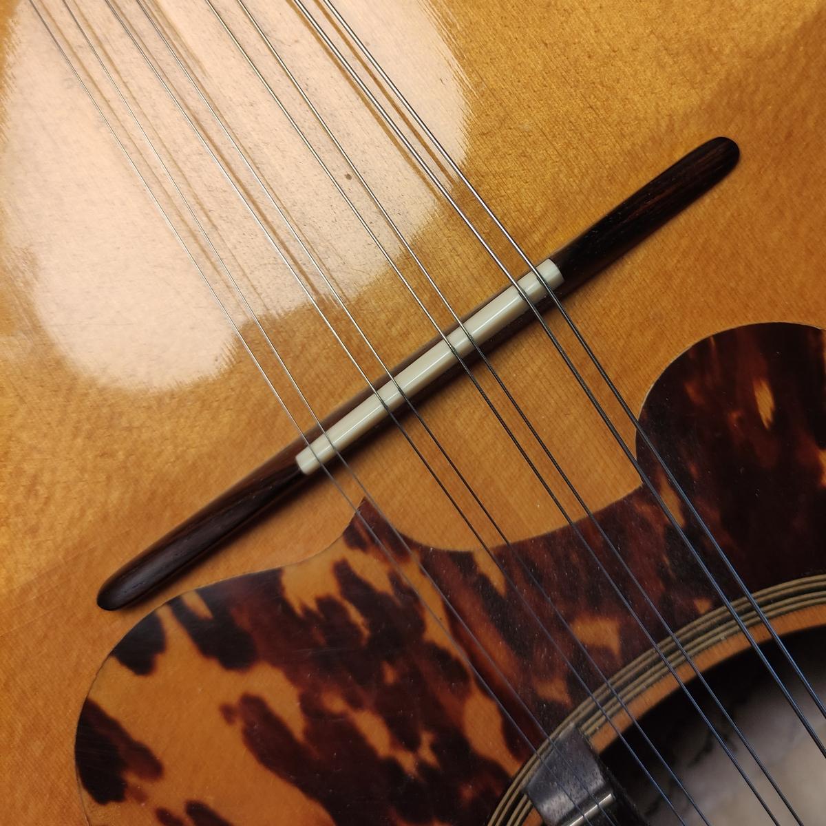 Mandoline Steg Suzuki M-100 / Alfred Woll